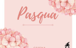 piccolissimo pasqua 2019 Cesena